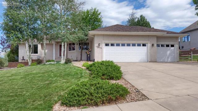 15955 Holbein Drive, Colorado Springs, CO 80921 (#4528182) :: 8z Real Estate