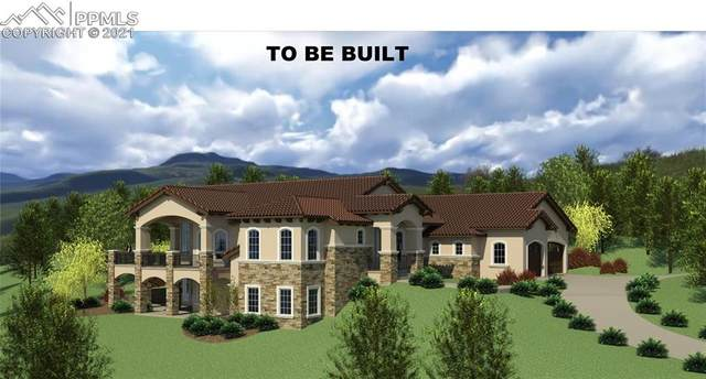 4620 Governors Point, Colorado Springs, CO 80906 (#4531210) :: Action Team Realty