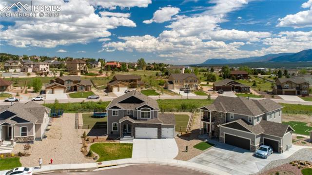 1192 Night Blue Circle, Monument, CO 80132 (#4532434) :: Tommy Daly Home Team