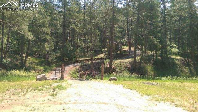 Northcreek Road, Beulah, CO 81023 (#4532790) :: The Kibler Group