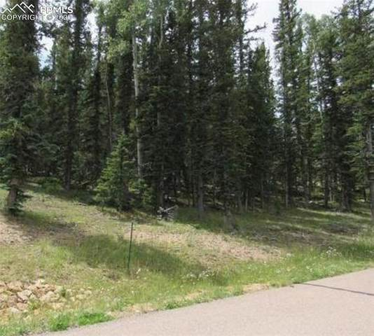 402 Silvermoon Heights, Divide, CO 80814 (#4535021) :: Action Team Realty