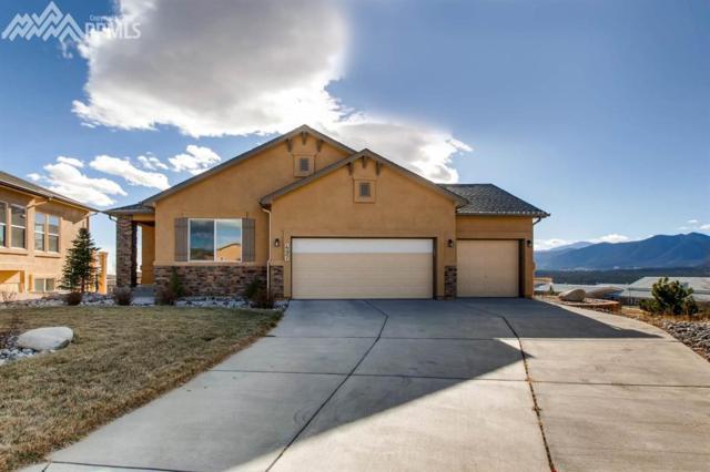 497 Whistler Creek Court, Monument, CO 80132 (#4537985) :: 8z Real Estate