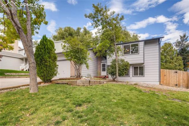 5135 Farm Ridge Place, Colorado Springs, CO 80917 (#4539463) :: Jason Daniels & Associates at RE/MAX Millennium
