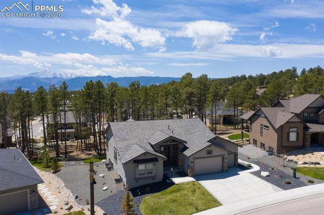 16430 Dancing Bear Lane, Monument, CO 80132 (#4541073) :: The Treasure Davis Team