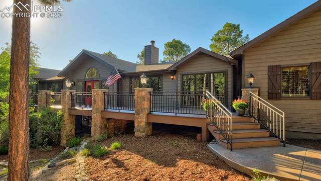 2770 Stagecoach Road, Colorado Springs, CO 80921 (#4541480) :: 8z Real Estate