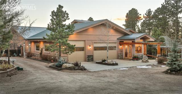2330 Rampart Range Road, Woodland Park, CO 80863 (#4542015) :: 8z Real Estate
