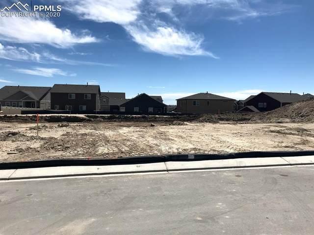 6698 Cumbre Vista Way, Colorado Springs, CO 80924 (#4543638) :: Venterra Real Estate LLC