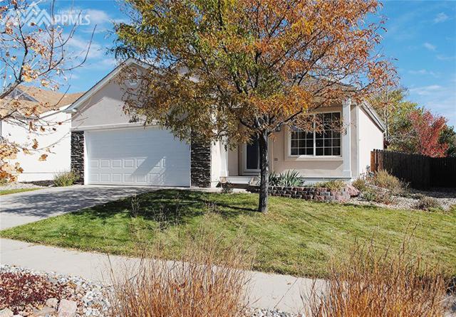 6063 Grand Mesa Drive, Colorado Springs, CO 80923 (#4547027) :: Action Team Realty