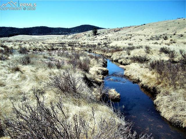 0 County Road 81 Road, Cripple Creek, CO 80813 (#4549736) :: Action Team Realty