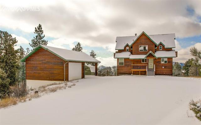 28 Turkey Circle, Florissant, CO 80816 (#4551481) :: The Peak Properties Group