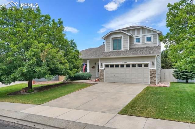 6645 Quarter Circle Road, Colorado Springs, CO 80922 (#4551517) :: 8z Real Estate