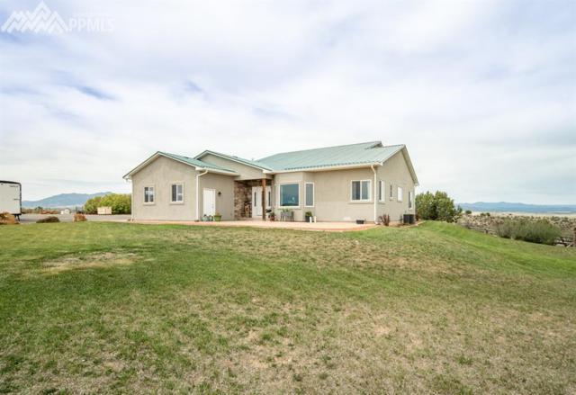 6511 Pickney Road, Rye, CO 81069 (#4552395) :: 8z Real Estate