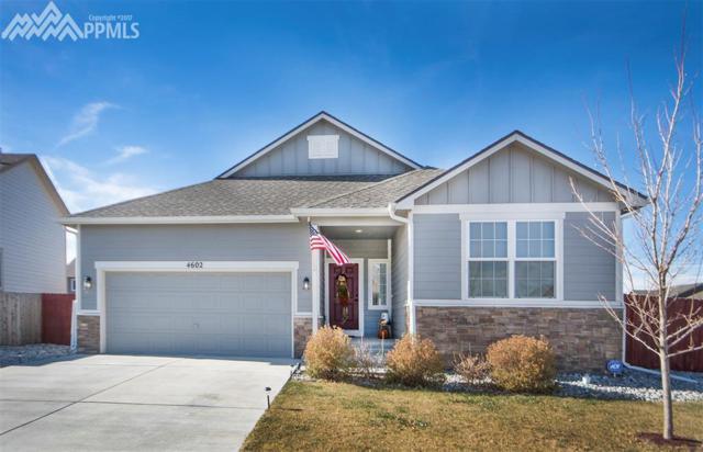 4602 Dancing Rain Way, Colorado Springs, CO 80911 (#4552761) :: 8z Real Estate