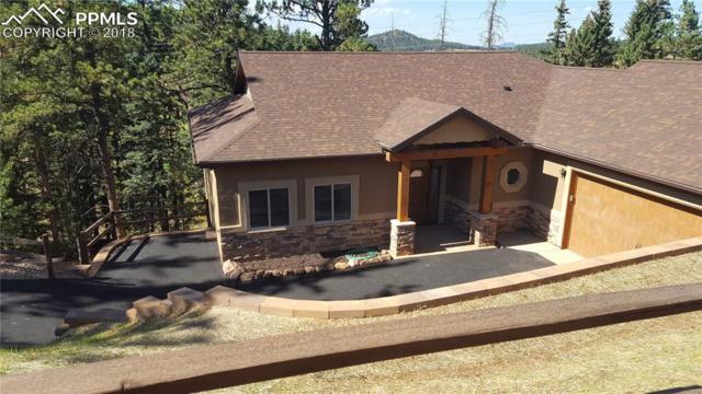 200 Iron Eagle Point, Woodland Park, CO 80863 (#4555825) :: The Treasure Davis Team