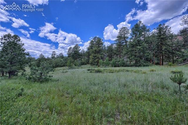 202 Pike View Drive, Divide, CO 80814 (#4558990) :: 8z Real Estate