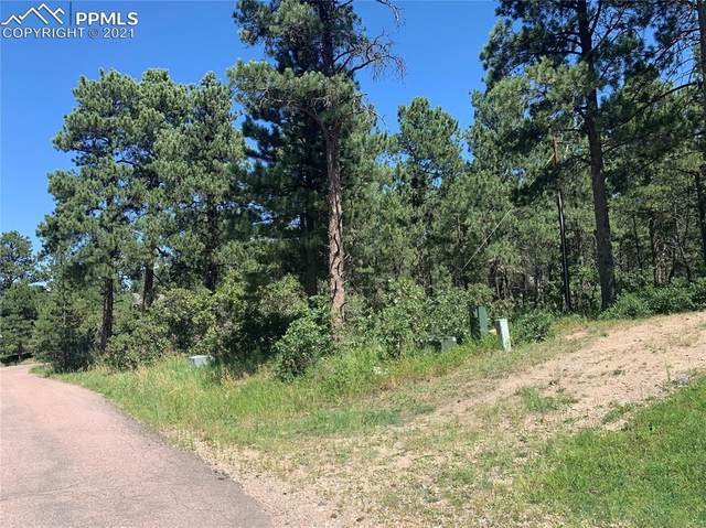 19925 Chisholm Trail, Monument, CO 80132 (#4559205) :: The Kibler Group