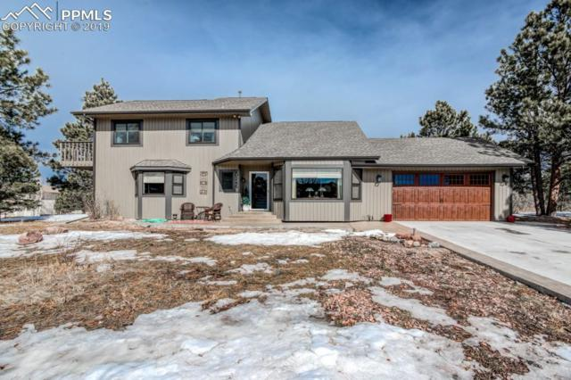 20245 Silver Horn Lane, Monument, CO 80132 (#4559838) :: Action Team Realty