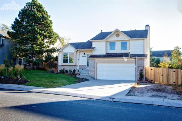 4050 Zurich Drive, Colorado Springs, CO 80920 (#4560652) :: 8z Real Estate