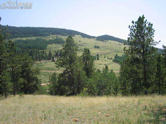 L7 CCME 19 Unknown Ridge, Cripple Creek, CO 80813 (#4563638) :: The Daniels Team