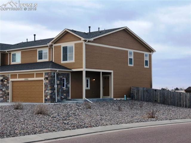11915 Brahman Court, Falcon, CO 80831 (#4564460) :: CENTURY 21 Curbow Realty