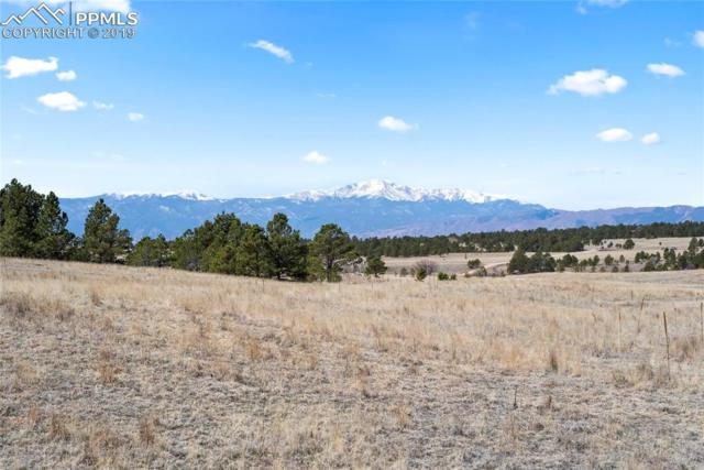 9226 Nature Refuge Way, Colorado Springs, CO 80908 (#4564674) :: Tommy Daly Home Team