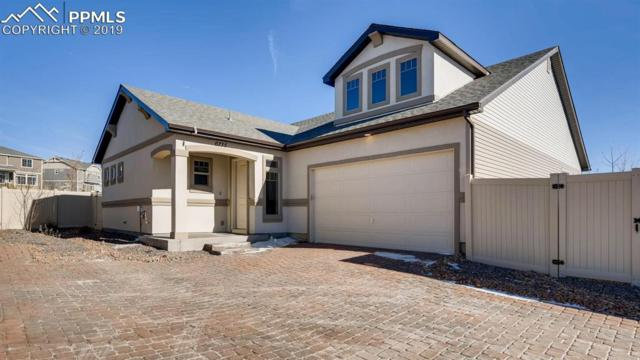 6735 Windbrook Court, Colorado Springs, CO 80927 (#4564956) :: 8z Real Estate