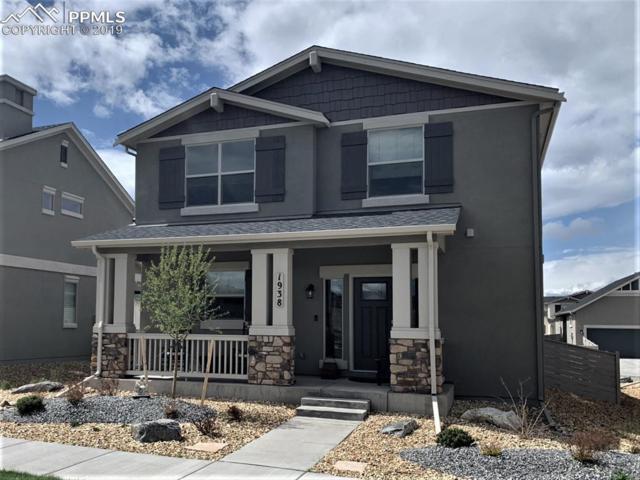 1938 Volterra Way, Colorado Springs, CO 80921 (#4566083) :: Venterra Real Estate LLC