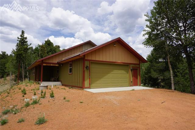 1131 Pikes Peak Drive, Divide, CO 80814 (#4569271) :: 8z Real Estate
