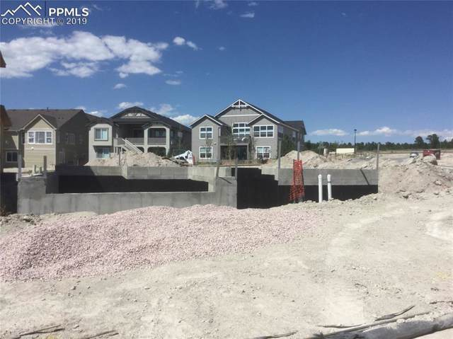 4564 Captain Jack Lane, Colorado Springs, CO 80924 (#4570850) :: 8z Real Estate