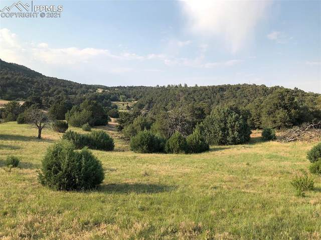 Lot 90 Rugby Mines Road, Aguilar, CO 81020 (#4572226) :: Action Team Realty