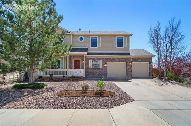 1240 Whistler Hollow Drive, Colorado Springs, CO 80906 (#4572995) :: RE/MAX Advantage