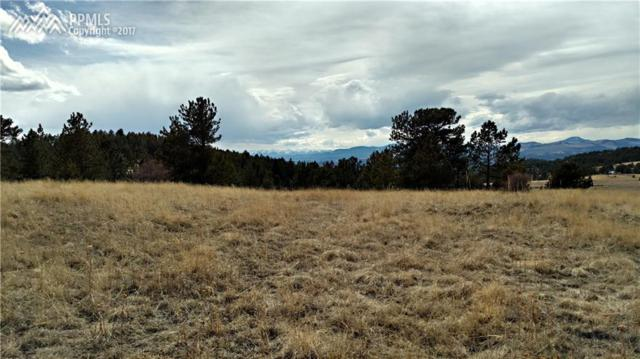 Being Verified, Cripple Creek, CO 80813 (#4576082) :: 8z Real Estate