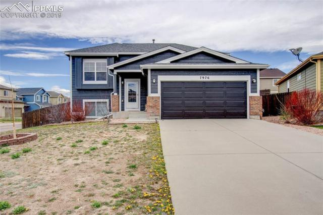 7976 Cairn Court, Fountain, CO 80817 (#4576238) :: CENTURY 21 Curbow Realty