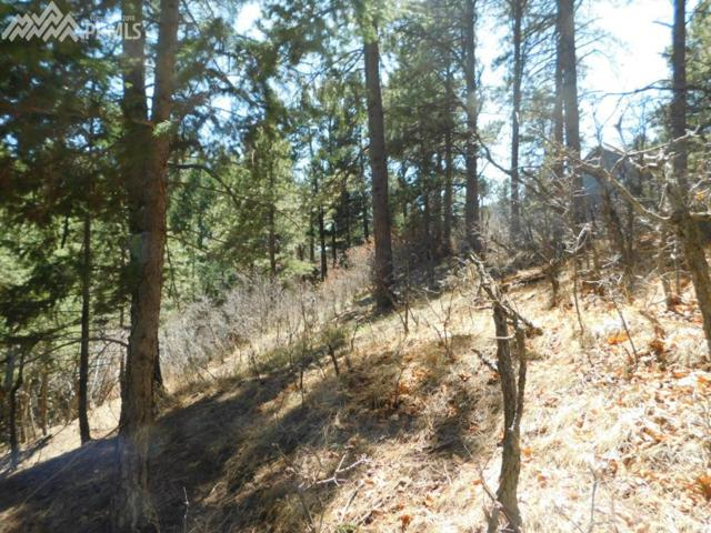 717 Eaton Road, Palmer Lake, CO 80133 (#4576751) :: Colorado Home Finder Realty