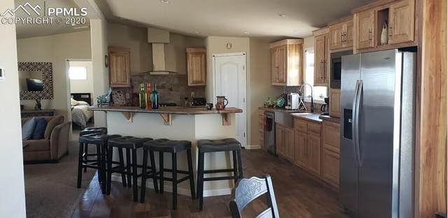 3560 Johnson Road, Rush, CO 80833 (#4580883) :: The Harling Team @ Homesmart Realty Group