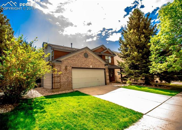 6325 Crested Butte Circle, Colorado Springs, CO 80919 (#4582962) :: The Hunstiger Team