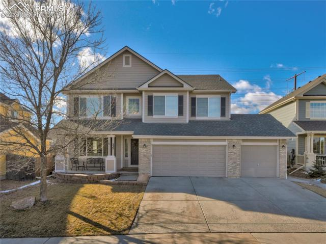 335 High Plains Street, Castle Rock, CO 80104 (#4583217) :: 8z Real Estate