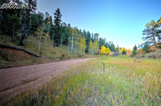 493 Willow Road, Divide, CO 80814 (#4583626) :: 8z Real Estate