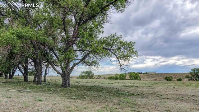 26261 Judge Orr Road, Calhan, CO 80808 (#4585207) :: Tommy Daly Home Team