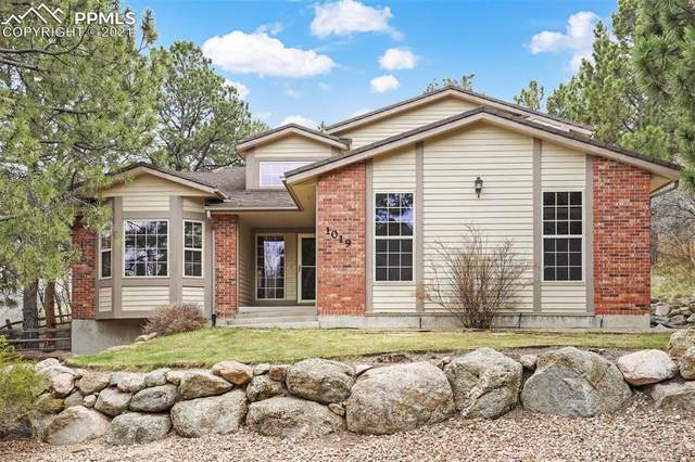 1019 Haverhill Place, Colorado Springs, CO 80919 (#4587126) :: The Daniels Team