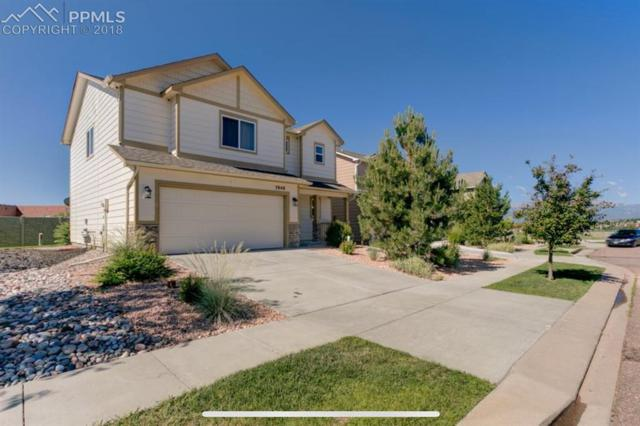 3848 Swainson Drive, Colorado Springs, CO 80922 (#4592433) :: The Hunstiger Team