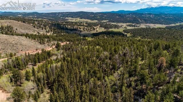 1310 Park Ridge Drive, Lake George, CO 80827 (#4595618) :: Fisk Team, RE/MAX Properties, Inc.