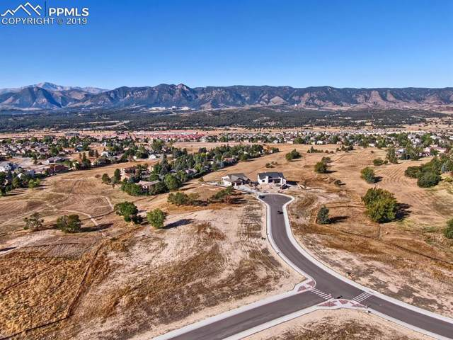 14344 Spyglass Hill Place, Colorado Springs, CO 80921 (#4596484) :: The Daniels Team