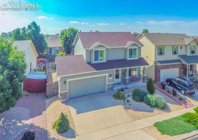 4833 Tory Ridge Drive, Colorado Springs, CO 80916 (#4599203) :: 8z Real Estate