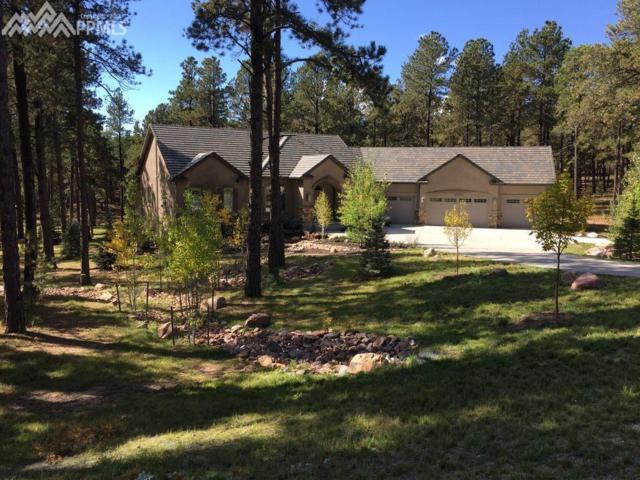 15685 Open Sky Way, Colorado Springs, CO 80908 (#4602251) :: The Daniels Team