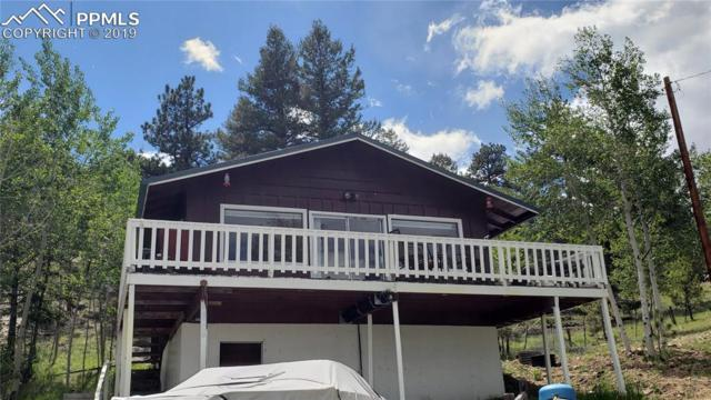 92 Cherokee Path, Lake George, CO 80827 (#4605492) :: Fisk Team, RE/MAX Properties, Inc.