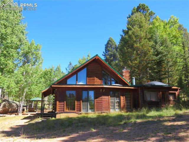 22 Garnet Circle, Florissant, CO 80816 (#4609510) :: The Peak Properties Group