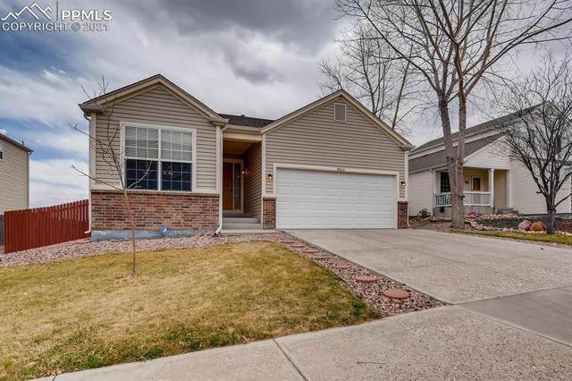 8806 Silver Glen Drive, Fountain, CO 80817 (#4609641) :: Tommy Daly Home Team