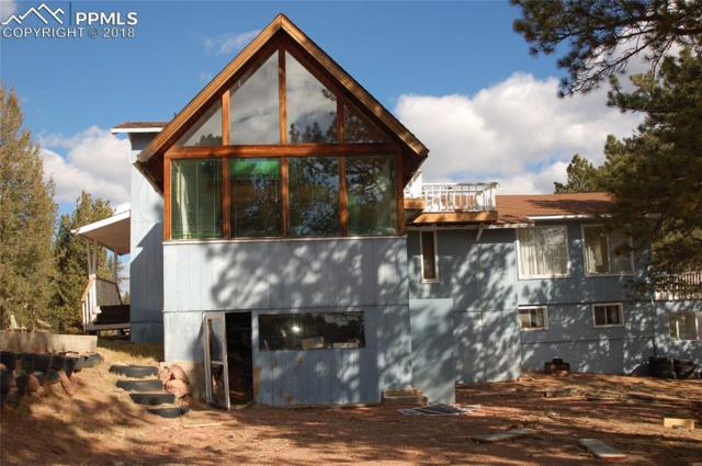 1401 County 12 Road, Florissant, CO 80816 (#4613113) :: The Peak Properties Group