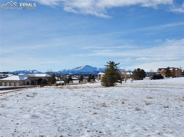 19882 Kershaw Court, Monument, CO 80132 (#4615314) :: Action Team Realty